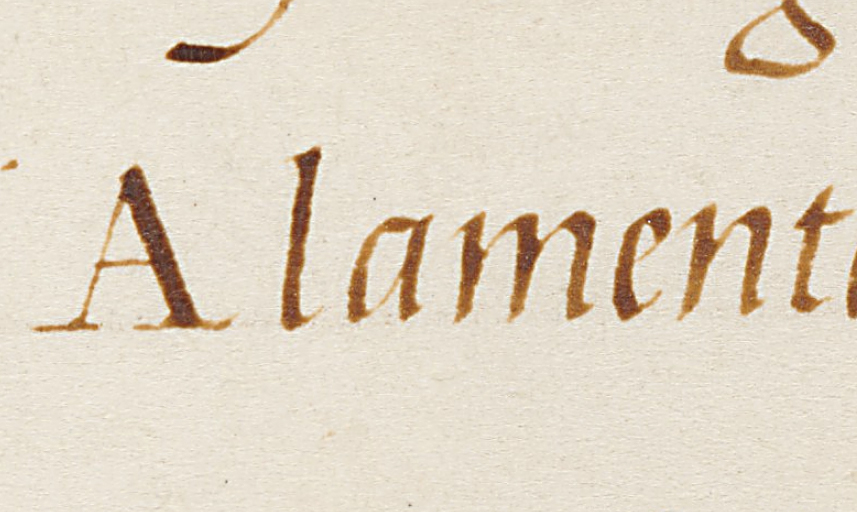 cataneoscriptdetail05