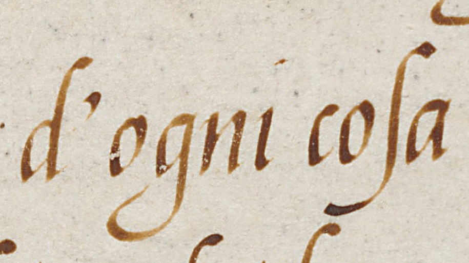 cataneoscriptdetail10