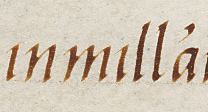 cataneoscriptdetail11